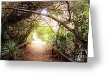 Passageway Greeting Card by Judy Via-Wolff