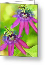 Passiflora Piresii Vine  - Passiflora Twins Greeting Card by Michelle Wiarda