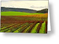 Pastoral Vineyards Of Asti Greeting Card by Antonia Citrino
