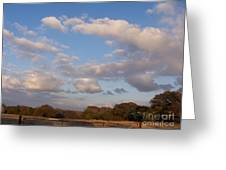 Pasture Clouds Greeting Card by Susan Williams