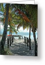 Path To Smathers Beach - Key West Greeting Card by Frank Mari
