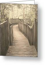 Pathway Greeting Card by Melissa Petrey