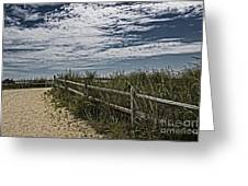 Pathway To The Sea Greeting Card by Tom Gari Gallery-Three-Photography