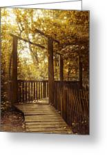 Pathway Greeting Card by Wim Lanclus