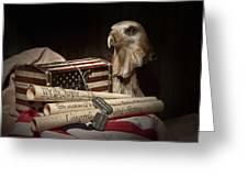 Patriotism Greeting Card by Tom Mc Nemar
