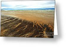 Patterns In The Tides Greeting Card by Artist and Photographer Laura Wrede