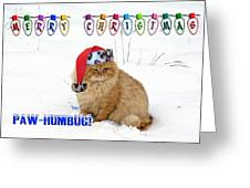 Paw Humbug Greeting Card by Robyn Stacey