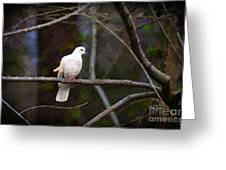 Peace Be With You Greeting Card by Cris Hayes
