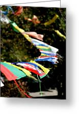 Peace On The Winds Greeting Card by Ramon Fernandez