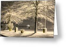 Peaceful Blizzard Greeting Card by JC Findley