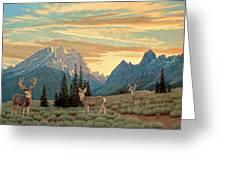 Peaceful Evening - Tetons Greeting Card by Paul Krapf