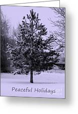 Peaceful Holidays Greeting Card by Carol Groenen