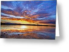 Peaceful Reflections Greeting Card by James BO  Insogna