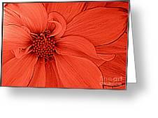 Peach Blossom Greeting Card by Photographic Art and Design by Dora Sofia Caputo