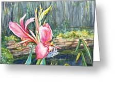 Peach Canna by the Pond Greeting Card by Patricia Allingham Carlson