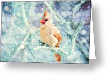 Peaches In The Snow Greeting Card by Amy Tyler