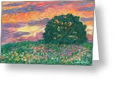 Peachy Sunset Greeting Card by Kendall Kessler