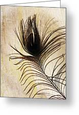 Peacock Feather Silhouette Greeting Card by Sarah Loft