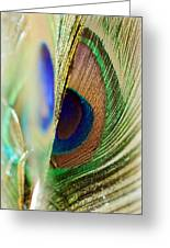Peacocks Dance The Samba Greeting Card by Lisa Knechtel