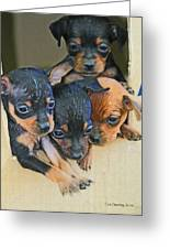 Peanuts Puppies 4 Of 5 Greeting Card by Tom Janca