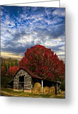 Pear Trees On The Farm Greeting Card by Debra and Dave Vanderlaan