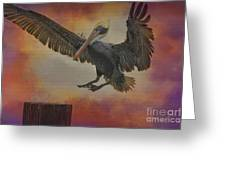Pelican Grace Greeting Card by Deborah Benoit