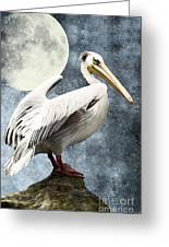Pelican Night Greeting Card by Angela Doelling AD DESIGN Photo and PhotoArt