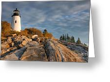 Pemaquid Point Light Vi Greeting Card by Clarence Holmes