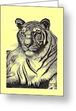Pen And Ink Drawing Of Royal Tiger Greeting Card by Mario  Perez