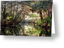 Pepper Creek Greeting Card by Sheri McLeroy