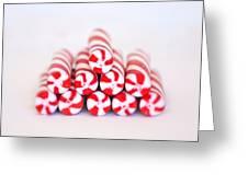 Peppermint Twist - Candy Canes Greeting Card by Kim Hojnacki