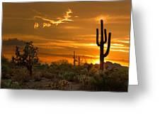 Peralta Arizona Sunset Greeting Card by Dave Dilli