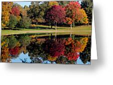 Perfect Day Greeting Card by Rob Blair