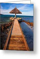 Perfect Vacation Greeting Card by Adam Romanowicz