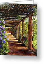 Pergola Walkway Greeting Card by David Lloyd Glover