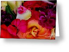 Petal River Greeting Card by Jeanette French