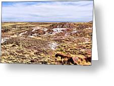 Petrified Forest National Park Greeting Card by Dan Sproul