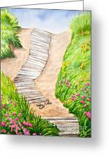 Philbin Beach Path Greeting Card by Michelle Wiarda