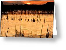 Philippines Manila Fishing Greeting Card by Anonymous