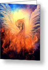 Phoenix Rising Greeting Card by Marina Petro