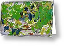 Pick Me Stomp Me II Greeting Card by Ken Evans