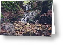Picturesque Greeting Card by Laurie Search