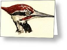 Pileated Woodpecker Head Study Greeting Card by Juan  Bosco