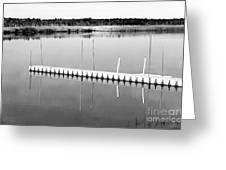 Pine Barrens Dock Greeting Card by John Rizzuto