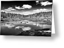 Pine Barrens Lake Greeting Card by John Rizzuto