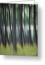 Pine Forest. Blurred Greeting Card by Bernard Jaubert