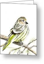 Pine Siskin Finch Greeting Card by Elisa Gabrielli