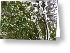 Pine tree covered with snow Greeting Card by Lanjee Chee