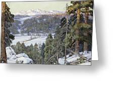 Pines In Winter Greeting Card by George Gardner Symons