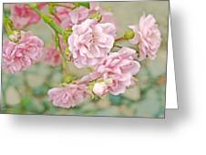 Pink Fairy Roses Greeting Card by Jennie Marie Schell